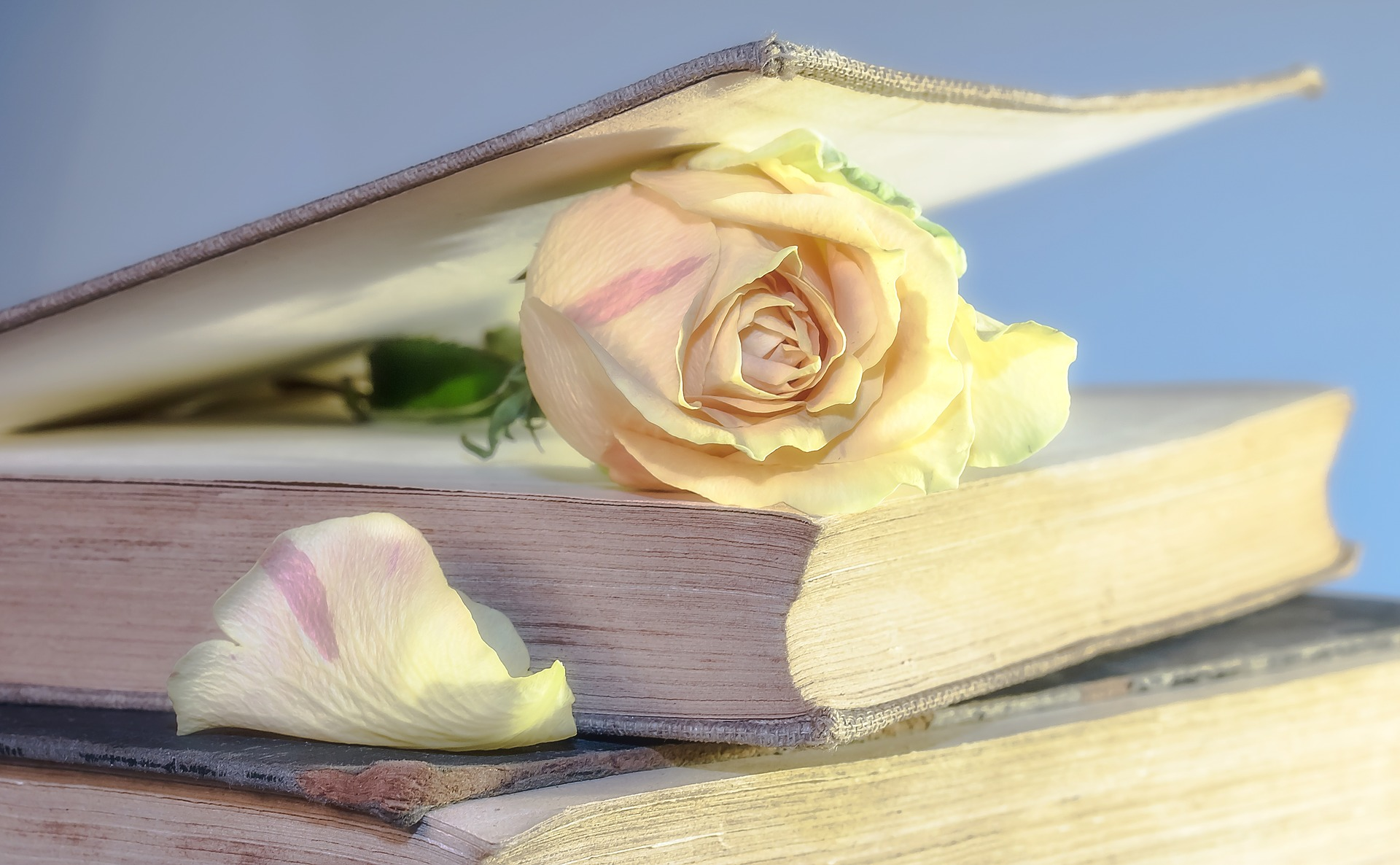 Čitanjem i pisanjem protiv depresije!