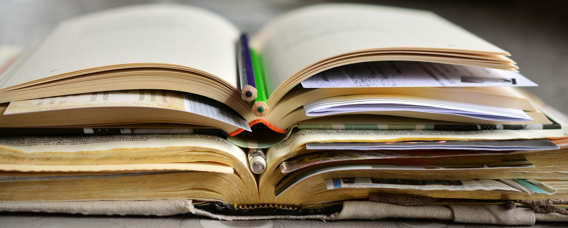 Studiranje u Nišu - prednosti i problemi?
