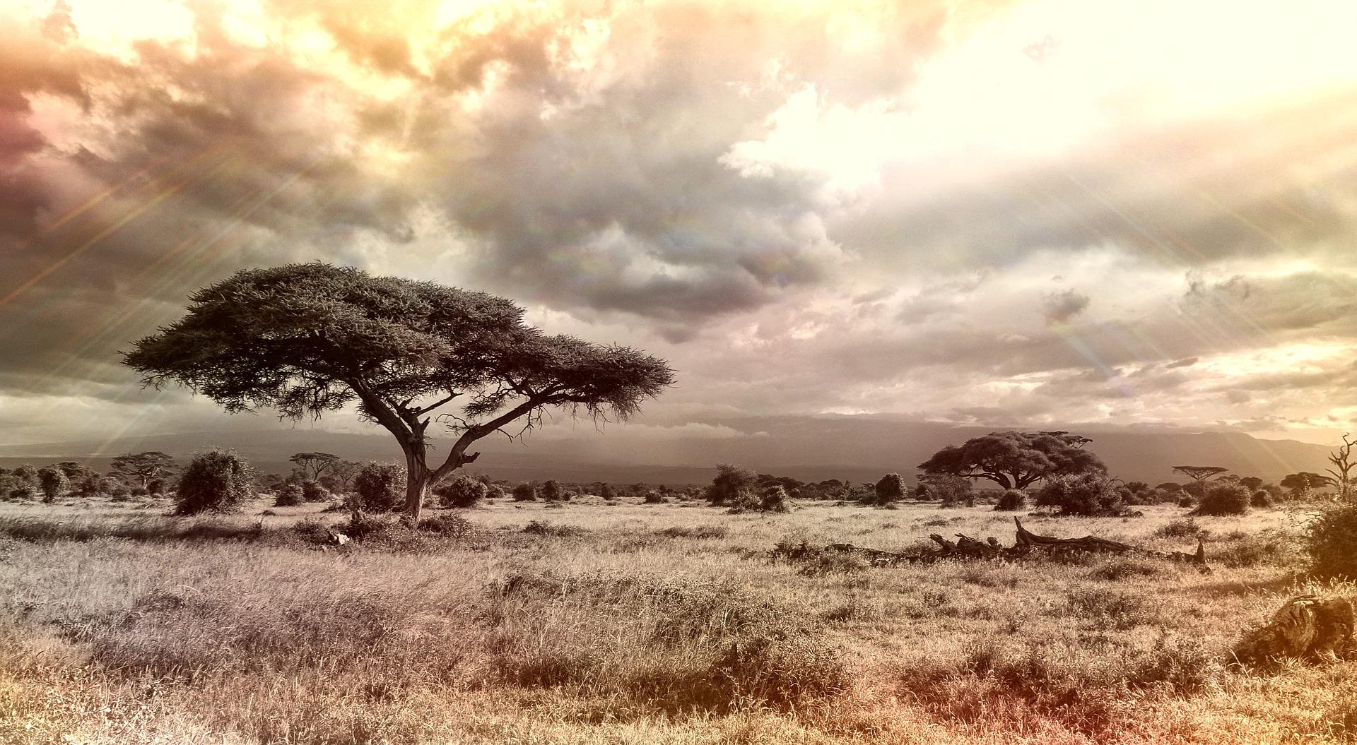 Afrika – Puškinova inspiracija