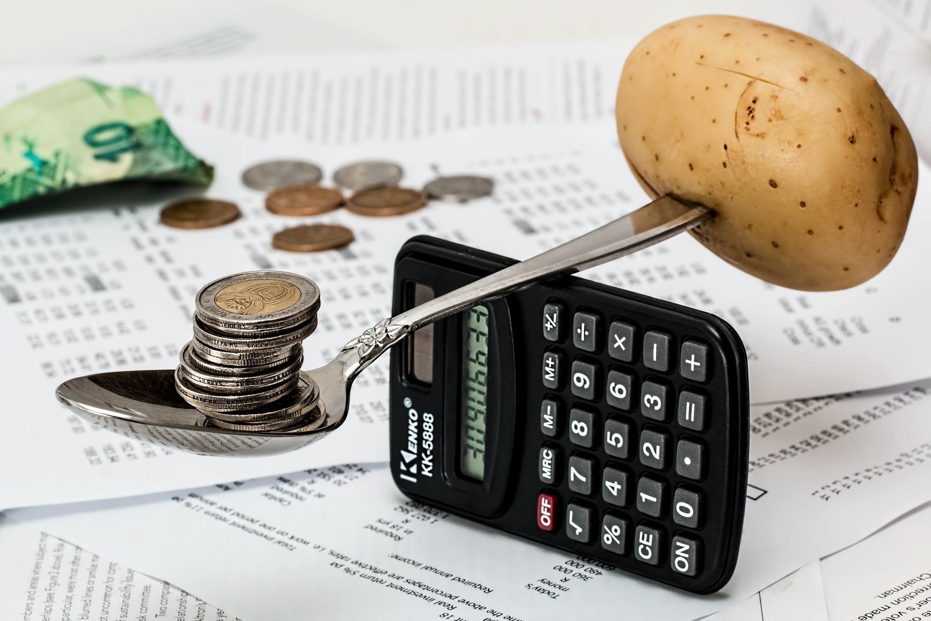 Kako preživeti godinu samofinansiranja?