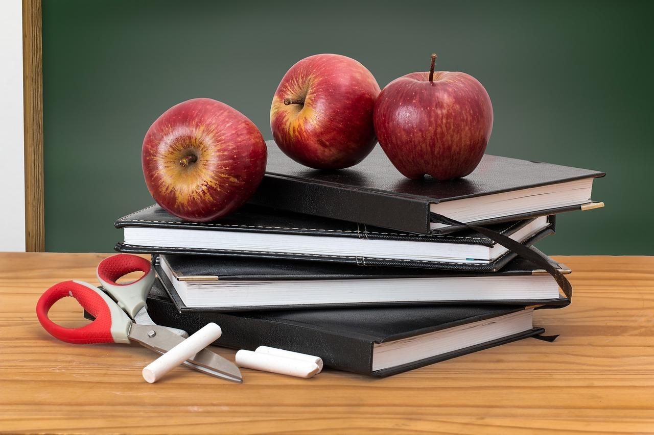 Kako uspešno držati privatnu nastavu?