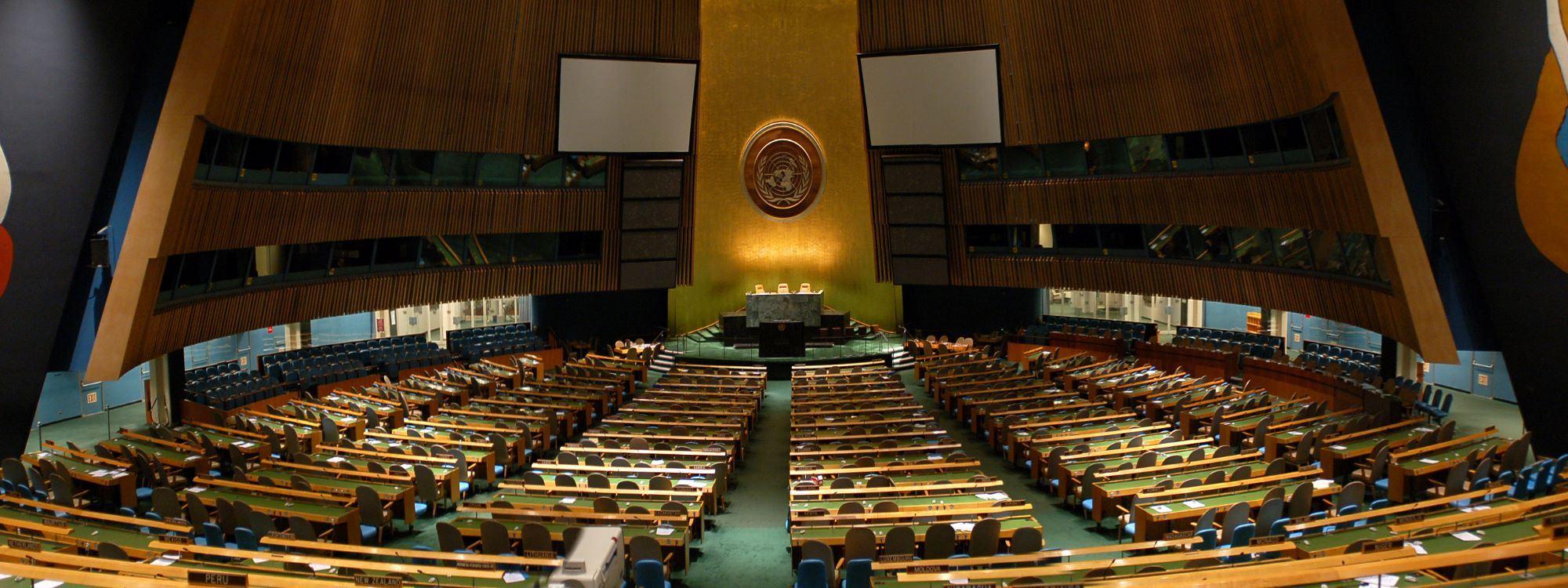 Predstavljanje Srbije u Ujedinjenim nacijama iz ugla mladih