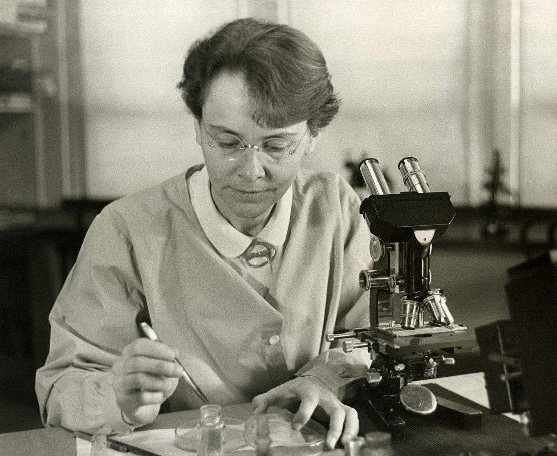 Barbara Maklintok: čekala je 30 godina Nobelovu nagradu