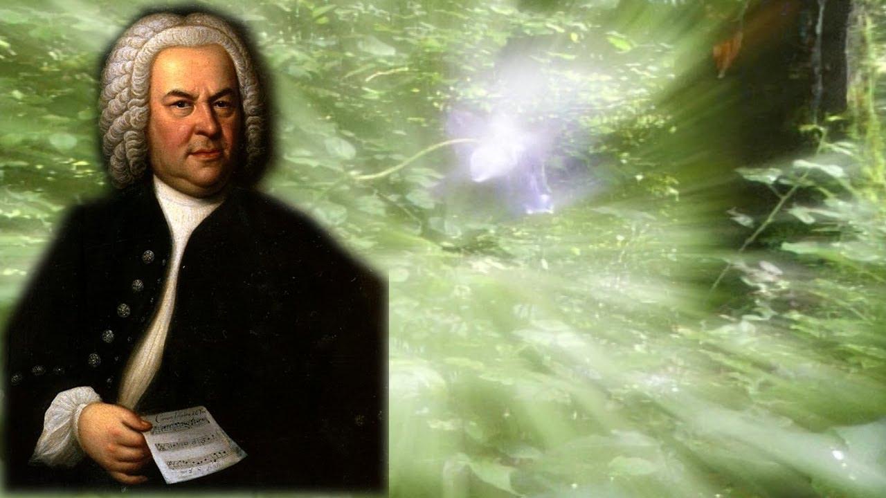 Johan S. Bah: Utemeljivač muzičke tradicije