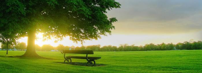 FISEC 16: O zaštiti životne sredine