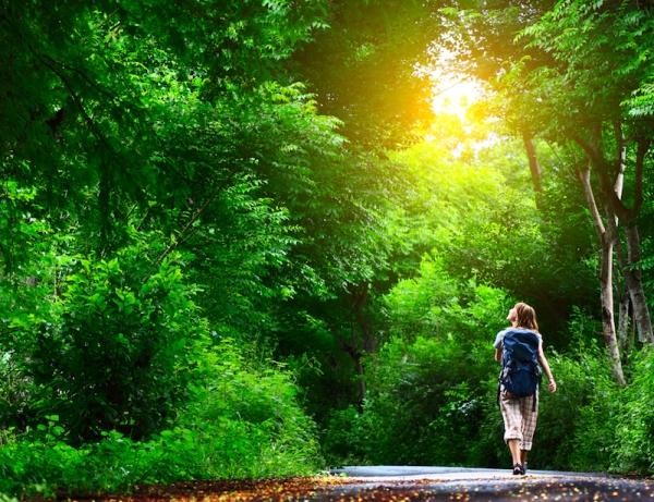 PMP, solastaglija i ostale bolesti novog doba